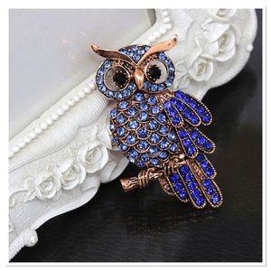 Blue Rhinestone Owl Brooch